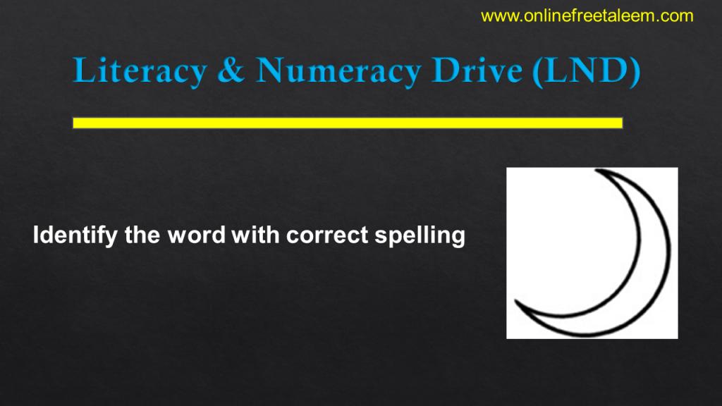 LND English Tests class 3