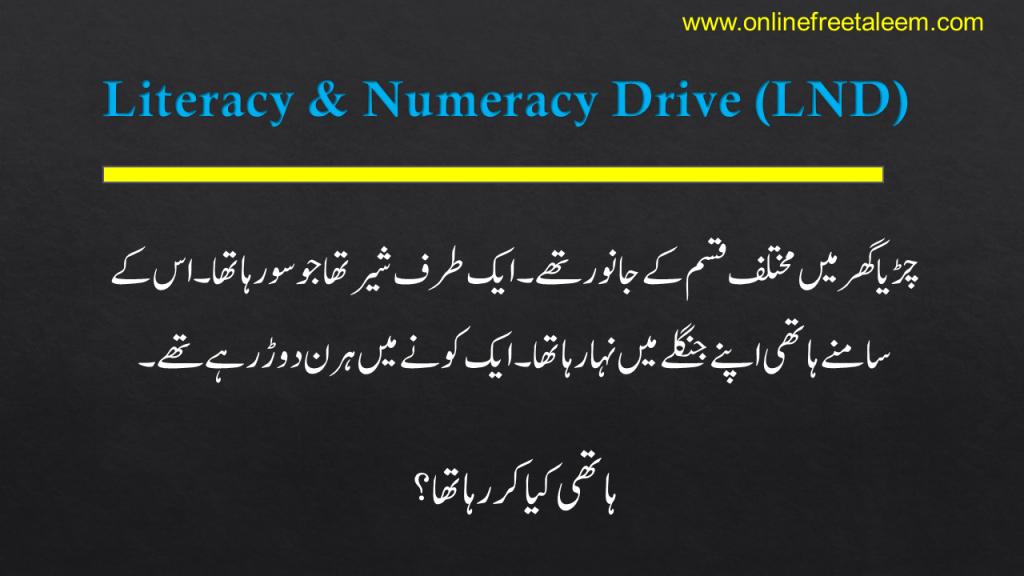 Literacy & Numeracy Drive Urdu