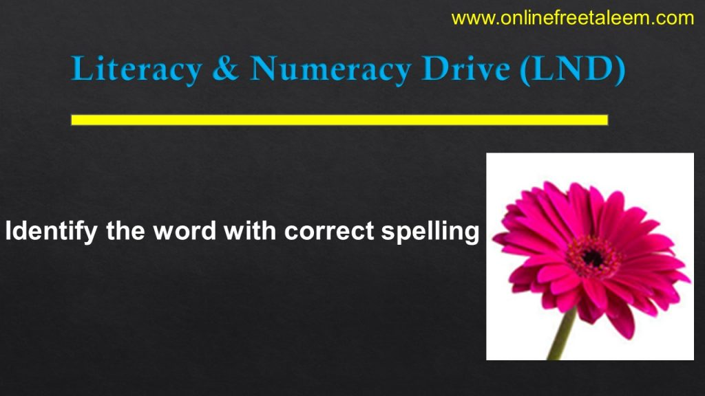 LND English Practice Test 9