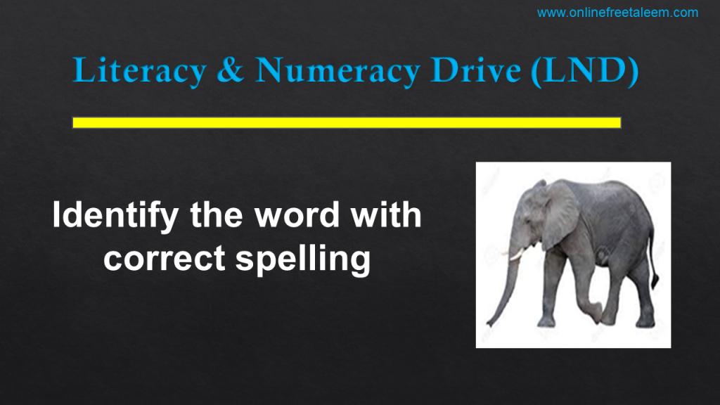 LND English Test No. 5